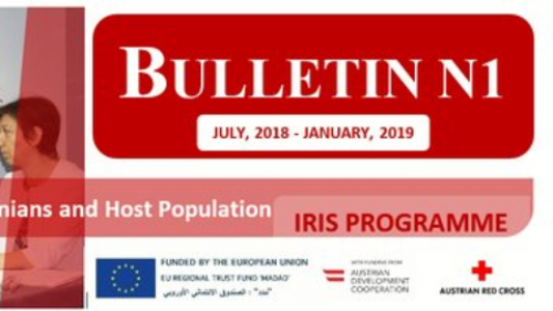IRIS Programme Bulletin #1