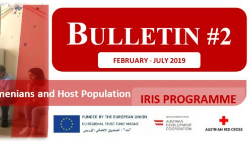 IRIS Programme Bulletin #2