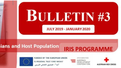 IRIS Programme Bulletin #3